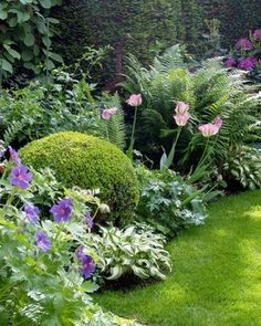 I love the well-kept boxwood amidst the naturalized timberline – Garden ideas – Beautiful Garden Types - Beautiful Garden Types Back Gardens, Small Gardens, Outdoor Gardens, Garden Types, Amazing Gardens, Beautiful Gardens, Garden Cottage, Garden Living, Garden Bed