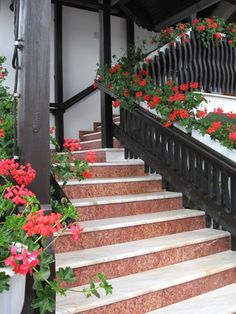 What Are the Benefits of Stair Climbing? Stair Art, Stair Climbing, Stair Steps, Front Steps, North America, Benefit, Street Art, Stairs, Landscape