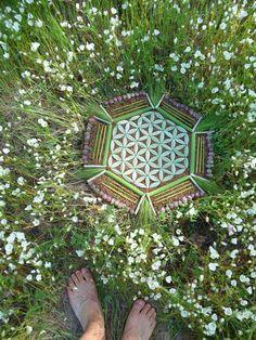 Δ✡~GeometríaSagrada~✡Δ۞ Flower of Life Meditation Mandalas made from nature Mandala Nature, Mandala Art, Art Nature, Land Art, Ephemeral Art, Yoga Studio Design, Flower Of Life, Crystal Grid, Sacred Geometry