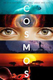 Ver Cosmos: Una odisea en el espacio-tiempo (2014) Online Castellano, Latino y Subtitulada HD - PelisPlus.TV
