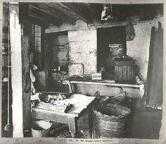 A Sydney kitchen, 1900