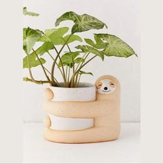 "Lazy little sloth-shaped planter pot perfect for your favorite succulents or plants.Give your plants some love with this ceramic planter featuring a super-snuggly sloth giving your greens a hug. In a speckled finish. Finished with drainage hole and plug at base. Content + Care- Ceramic- Wipe clean- ImportedSize- Dimensions: 6.69""l x 5.12""w x 5.12""h- Weight: 1.59 lbs Planting Succulents, Potted Plants, Indoor Plants, Potted Flowers, Ceramic Planters, Planter Pots, Ceramic Flower Pots, Ceramic Pottery, Ceramic Art"