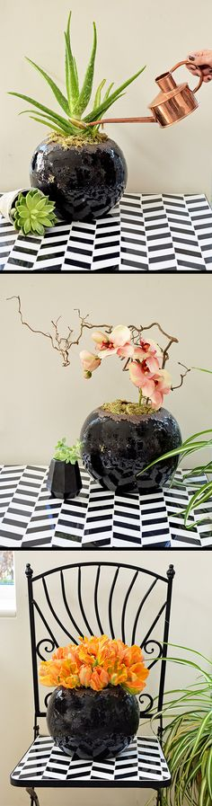 I really love this rustic round plant pot and I couldn't resist having a play about styling it in three different ways- MiaFleur