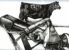 Show Cattle Art By Amanda Raithel