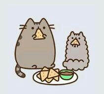 pusheen and stormy the kitten eat nachos(:
