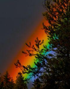 Twilight Rainbow.jpg (rain rainbow sunrise+sunset trees ). Photo by RavenM