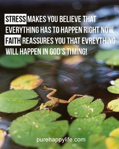 #quotes more on purehappylife.com - stress makes you believe that everything has to happen right now...