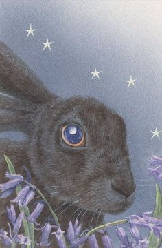 Bluebell Hare by Wendy Andrew - Pictify - your social art network
