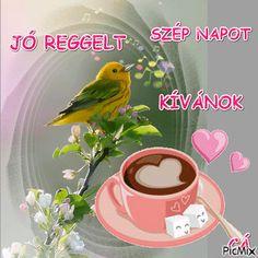 Retro Hits, Get Well Soon, Good Morning, Christian, Friends, Amazing, Buen Dia, Amigos, Bonjour