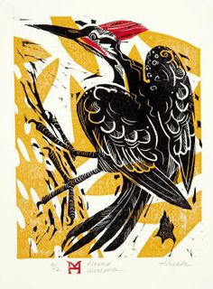 Pileated Woodpecker - Woodblock & Linocut Holly Meade 2012