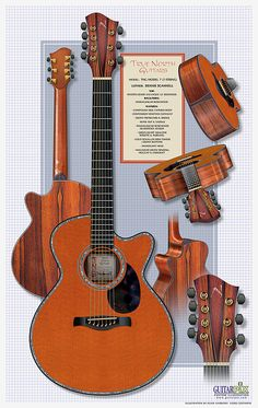 True North Guitars 7-String Acoustic