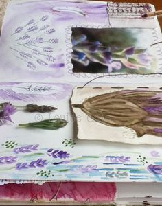 Love of lavender page in my #natureart sketchbook