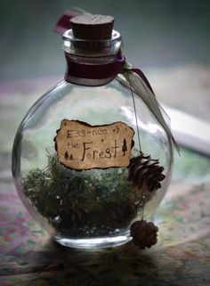 LoLa Enchanted — natural-magics: Magical Bottle - Essence of the. Enchanted Forest Bedroom, Enchanted Forest Decorations, Enchanted Forest Party, Woodland Bedroom, Woodland Decor, Potion Bottle, Witch Aesthetic, Faeries, Witchcraft