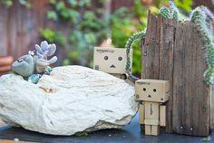 Hide and seek. Danbo, Plastic Models, Play, Mini, Garden, Garten, Lawn And Garden, Gardens, Gardening