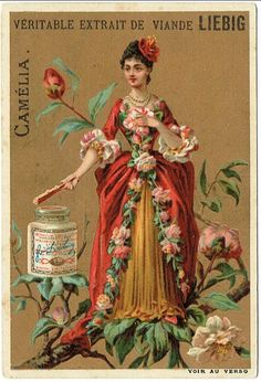 Liebig Flower Girl Trade card Original Vintage Adverting Card- collectors card- chrome Victorian cards Beauties
