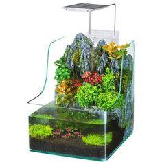 Penn Plax Aqua Terrarium Planting Tank with Aquarium for Fish Waterfall LED Latest Fish Tank - Fish Tank for sales Planted Aquarium, Aquarium Fish, Aquarium Garden, Saltwater Aquarium, Coral Aquarium, Fish Garden, Aquarium Stand, Glass Aquarium, Saltwater Tank