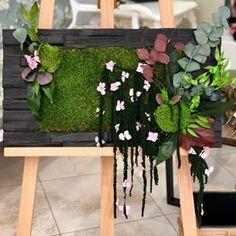 Вертикальное озеленение (@greenmoss48) • Фото и видео в Instagram Plants, Plant, Planets