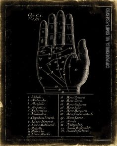 """Palm Reading Art Print Fortune Teller Old Woodcut Life Lines Large 16"""" x 20"""" Canvas-Wrapped Frame Series: Main Hand Lines Map Image"""