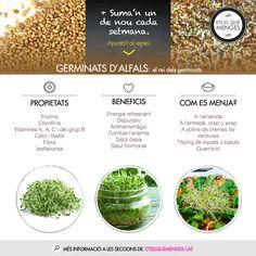 #sumanundenou Els germinats són l'essència de l'alimentació viva