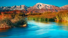 Owens River and the Sierra Nevada near Bishop, California (© Interfoto/Danita Delimont) Bing Backgrounds, Missouri River, Daily Pictures, Sierra Nevada, Natural Wonders, National Geographic, Family Travel, Around The Worlds, Bishop California