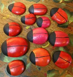 Painting rocks to look like lady bugs is a fast and easy project for beginning painters. This is a great project for rainy days when the kids are bored.