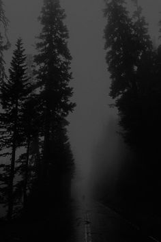 Dark forest, glow of the lake, an eternal dance of death Gothic Aesthetic, Slytherin Aesthetic, Nature Aesthetic, Night Aesthetic, Aesthetic Images, Aesthetic Black, Black Aesthetic Wallpaper, Aesthetic Wallpapers, Wattpad Background