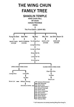 Kung fu family tree