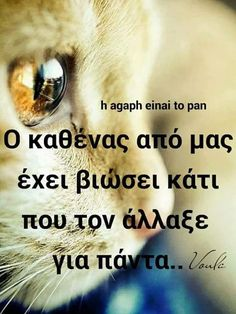Feeling Loved Quotes, Love Quotes, Greek Quotes, Some Words, Beautiful Words, Cat Lovers, Texts, Personality, Humor