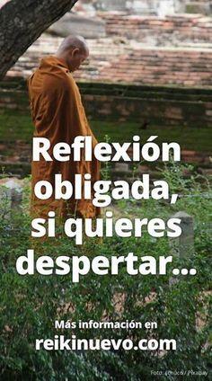 La de hoy es una reflexión obligada para todas las personas que quieren despertar. Más información: http://www.reikinuevo.com/reflexion-obligada-quieres-despertar/