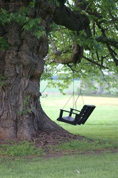 Old tree swing. Love this! Want one!