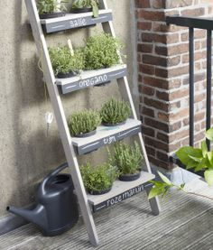 Vertical herb garden! Save space on your balcony or patio and save the pennies in your pocket: use an old ladder to put your potted herbs on. No more buying herbs, yummy freshness and it looks pretty too!