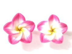 Hawaii Blumen-Ohrstecker: Amazon.de: Schmuck