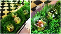"Salads in ""bubbles"" presented on wheat grass"