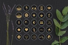Black & Gold Travel Highlight Icons by Jake & Meg on Insta Icon, Travel Icon, Utah Photographers, Social Media Template, Instagram Highlight Icons, Story Highlights, School Design, Icon Design, Instagram Story
