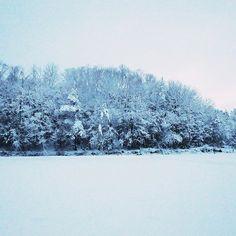 【imabokkuri】さんのInstagramをピンしています。 《* * おはようございます。 7時会社着。 * #冬 #雪 #森 #木 #通勤 #生活 #写真好きです #車窓風景 #winter #snow #forest #trees #life #vsco #indies_gram #reco_ig #pics_jp #like_photo_jp #ussyashinbu #shiga #japan》