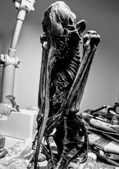 Monster Concept Art, Alien Concept, Horror Masks, Horror Art, Creepy Art, Weird Art, Alien Design, Bloodborne, Weird Fashion
