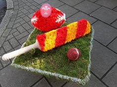 A mossed bespoke funeral tribute for a Sports fan. Tribute includes a Cricket bat and ball, and a Welsh Rugby ball. Florist London, Welsh Rugby, Funeral Tributes, Cricket Bat, Same Day Flower Delivery, Bespoke, Crochet Hats, Fan, Seasons