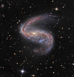 Distorted galaxy NGC 2442 can be found in the constellation of the flying fish, (Piscis) Volans. Located about 50 million light-years away, the galaxy's two spiral arms extending from a  central bar give it an hook-shaped appearance. This striking color image also shows obscuring dust lanes, young blue star clusters and reddish star forming regions surrounding a core of yellowish light from older stars. But the star forming regions seem more concentrated along the northern (top) spiral arm.