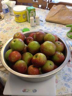 Stayman Winesap apples best for applebutter