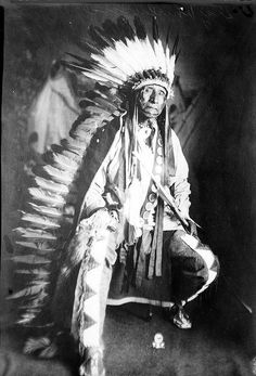 Wahmniyamni Hota (aka Gray Whirlwind) - Yanktonai - no date Native American Pictures, Native American Artwork, Native American Beauty, Native American Design, Native American History, American Indians, American Symbols, American Women, Native Indian