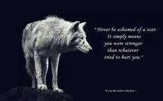 Afbeeldingsresultaat voor hurt wolf