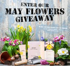 April showers have brought May flowers! Enter to win so you can smell as fresh as a daisy!