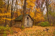 Getaway Cabins, Cute House, Country Houses, Autumn, Fall, Brush Strokes, Container, Homes, Seasons