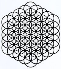 Fruit of Life created by taking away the outer double circle placed to hide this aspect of the Flower of Life and completing all the outer circles. See how it is actually a 2D representation of a 3D object. It holds Metatron's Cube, the key to all platonic solids, within its 3D form.
