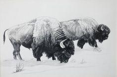Giclee Print - American Bison - Buffalo. $20.00, via Etsy.