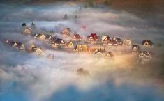 Photographer Marcin Sobas - Lost in the mist #2036056. 35PHOTO