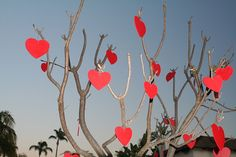 Valentinstag Geschwindigkeit Dating san diego