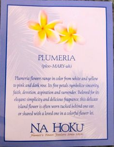 This card came with my Plumeria necklace from Na Hoku the fellas bought for me in Maui on my 40th birthday trip.