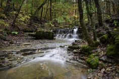 Tafv Falls in Busiek State Forest, just a few hundred yards from where this little creek flows in Woods Fork.
