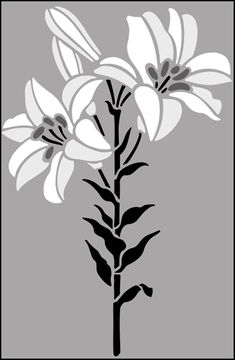 Garden Room stencils from The Stencil Library. Buy from our range of Garden Room stencils online. Page 2 of our Garden Room lily stencil catalogue. Stencil Patterns, Stencil Designs, Flower Graphic Design, Paisley Design, Paisley Pattern, Lilies Drawing, Stencils Online, Stencil Painting, Black White